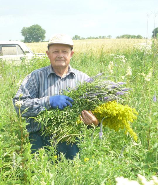 Фитотерапевт Сергей Марчук на заготовке трав